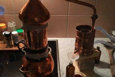 Kräuter zum verschenken und Destillieren